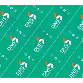 DNS COLOR PRINT A4 GR 250 FF 200 FSC