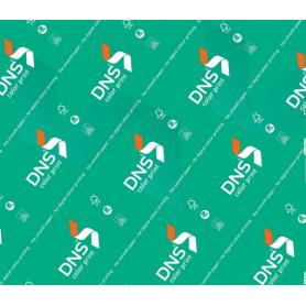 RS DNS COLOR PRINT A3 GR.120 FF.250
